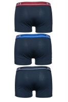 Vorschau: Boxershorts Trunk 3P CO/EL in Mehrfarbig